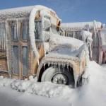 Frozen Buses