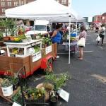 8-9-14 Farmers Market