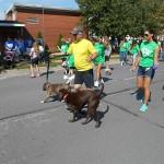 9-28-14 Doggie Jog 3